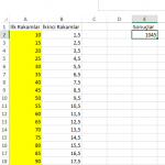 Excel_Toplama_4