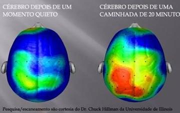 20 Dk Yürüyüşten Sonra Beyin! 2