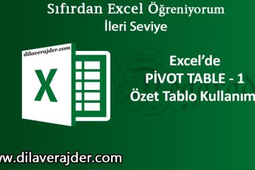 WEB Pivot table özet tablo 1